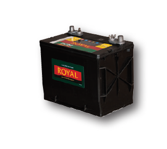 Royal Lead Acid battery DC31